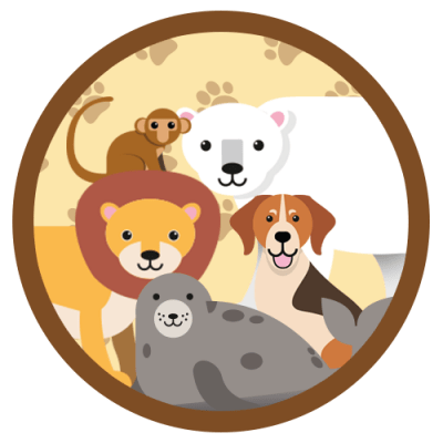 Andy_juego_animales